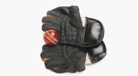 softening cricket gloves